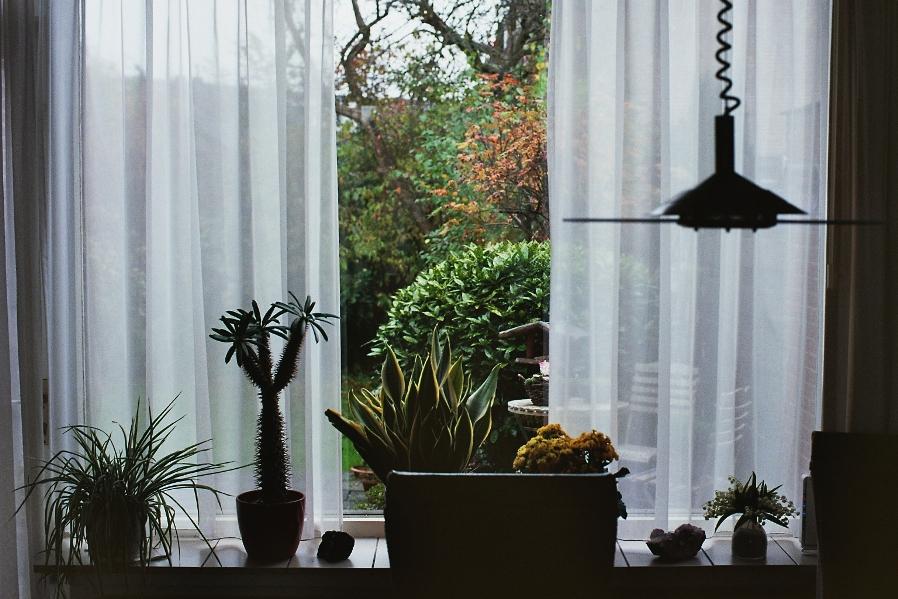 leafy decors