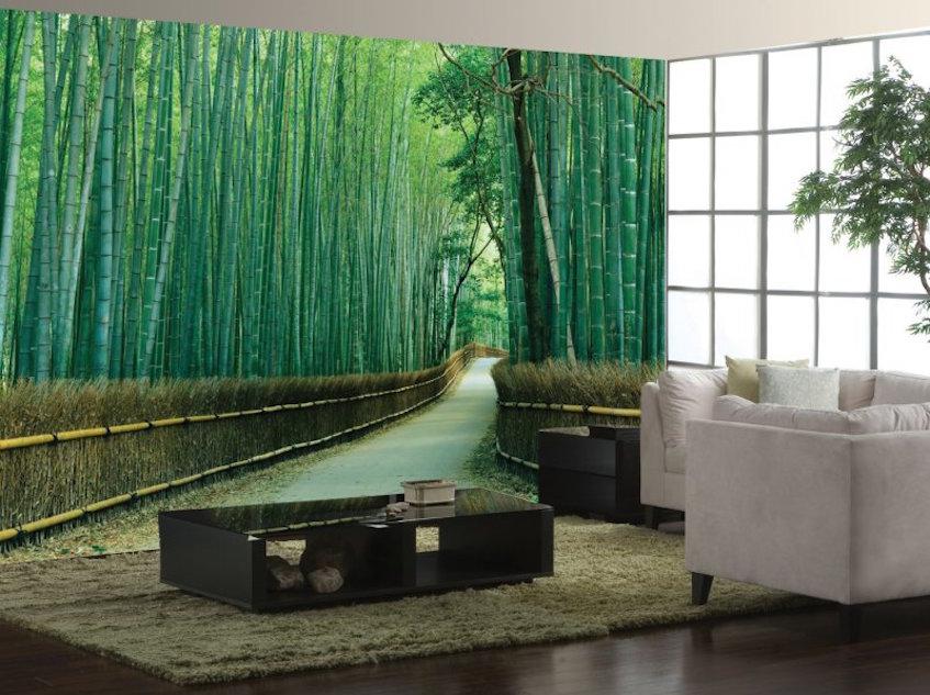 Thai Lushness of Bamboo