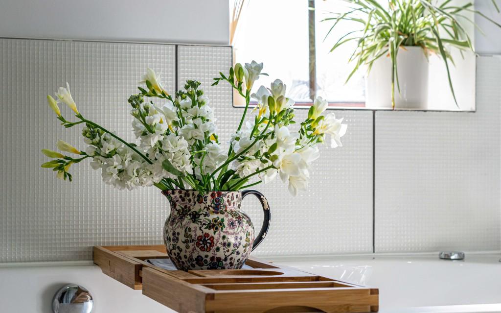bathroom decorative plants