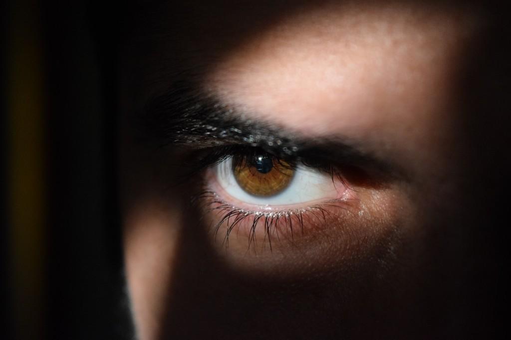 spy eye landlord