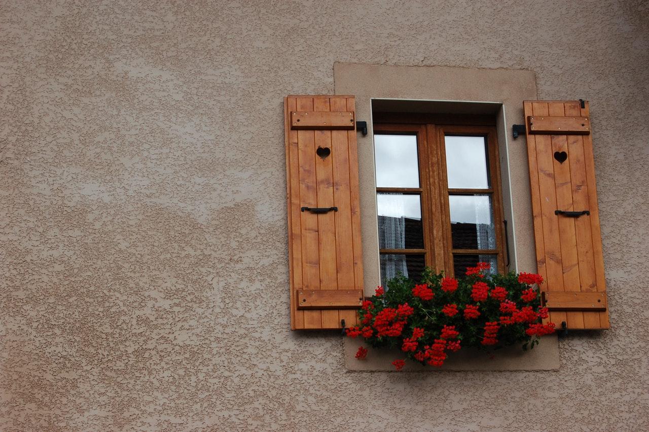 windows flower clean